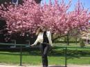 Весна на Лонг-Айленде