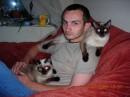 Это кошаки