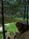 тихий уголок природы