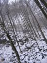 Красиво в Карпатах зимой