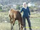 Обожаю лошадей!