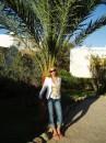 красивая пальма, красивая Я  он пальм много, а я одна;)