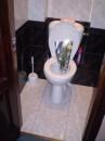 8е марта!!! Способ декорирования туалета от   Личинка_УдАвкИ