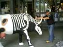 Я и корова. Дерибасовская стрит