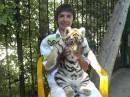 Правда симпатишный тигрик?