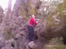 це моя подруга намагається то дерево підкорити))