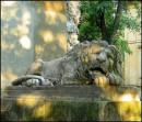 Лев який оберігає місто