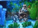 это подарок доче на день рождения)))) сегодня поедем за рыбками)) а пока они невидимки)