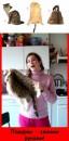 Как выгодно избавиться от собственной кошки!!!