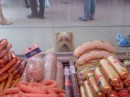 я бы сьел колбаски!
