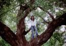 На дереве чувствую себя кошкой (пантерой):)))