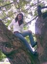 И снова я на дереве...