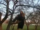 на дереве.....