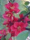 В ботаническом саду просто красота!!!!