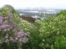 Ботанический сад  понравился ....вид на Днепр :)