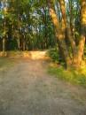 В Соломенском парке