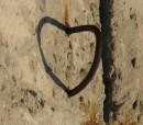 серце арматурне