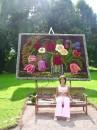 прошлым летом(2006) на выставке цветов))) люблю цветы,особенно хризантемы и розы