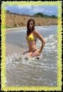 Bee on the sea:))))))))