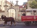 Да в Варшаве есть и такие интиресные трамвайчики