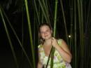 в бамбуке