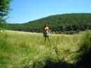 На фоне леса))