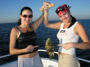 ловили рыбку в красном море