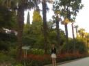 Никитско ботанический сад 2006 год