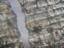 ось що вдалося зробити за допомогою мікроскопа і кривих рук-3