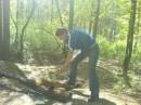 кореш-лесоруб