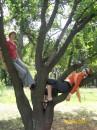 я с Викуськой на дереве