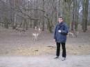 стоять спиной к такому оленю страшно... вон какие у него большие РОГА :)