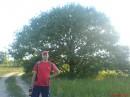 Ходили пешком к устью Десны... Нашли мега дуб
