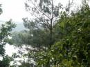 на берегу реки...связь у мя не ловит..пришлось ходить через лес сюда...