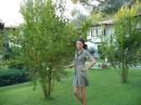 Впервые увидела гранатовое дерево вживую :-)