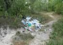 мусор на трухановом