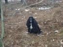 кажись она замерзла (эт фотка с зимних шашлыков в лесу...:))