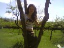 маевка