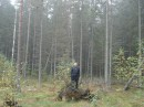 в лесу..за городом..кравиво там...
