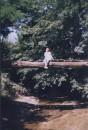 фото не очень...но высота хорошая....лето.июль 2004