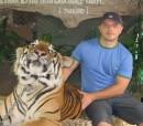 Тигр не мой