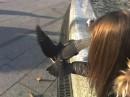 Я и голуби))))