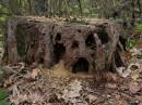 Замок лесных эльфов.