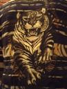 Тигра на спине