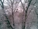 Вид из моего окна 16.11.2007