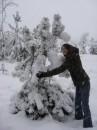 окутаю елочку теплом  воскресный снегопад