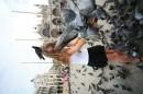 венеція. центральна площа. вирішили погодувати голубів