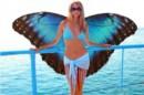Бабочка - капустница :)