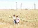 в степи татарской среди ветряков электогенерирующих нашёл цветик семицветик и подарил другу
