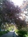 Обожаю весну!!!!!!!!!!!!!!!!!!!!!!!!!!